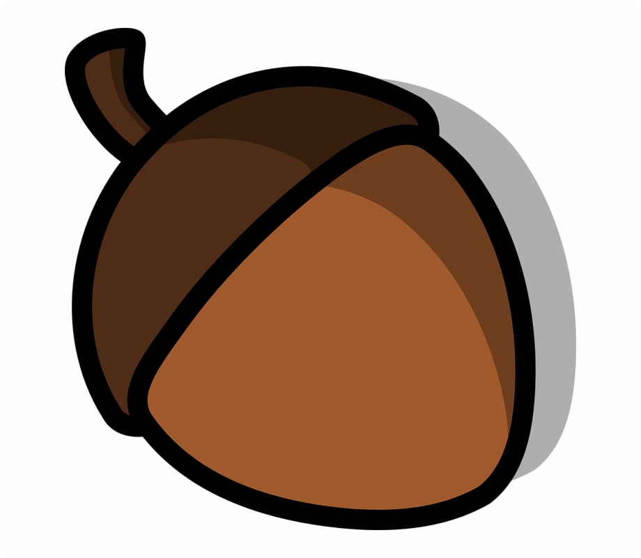 vector library library Brown clipart acorn. Free library clip art