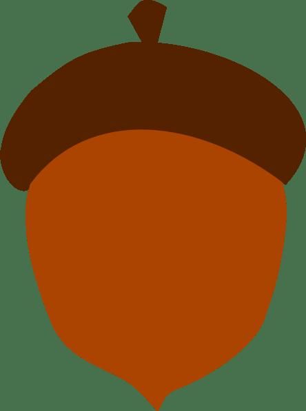png . Brown clipart acorn