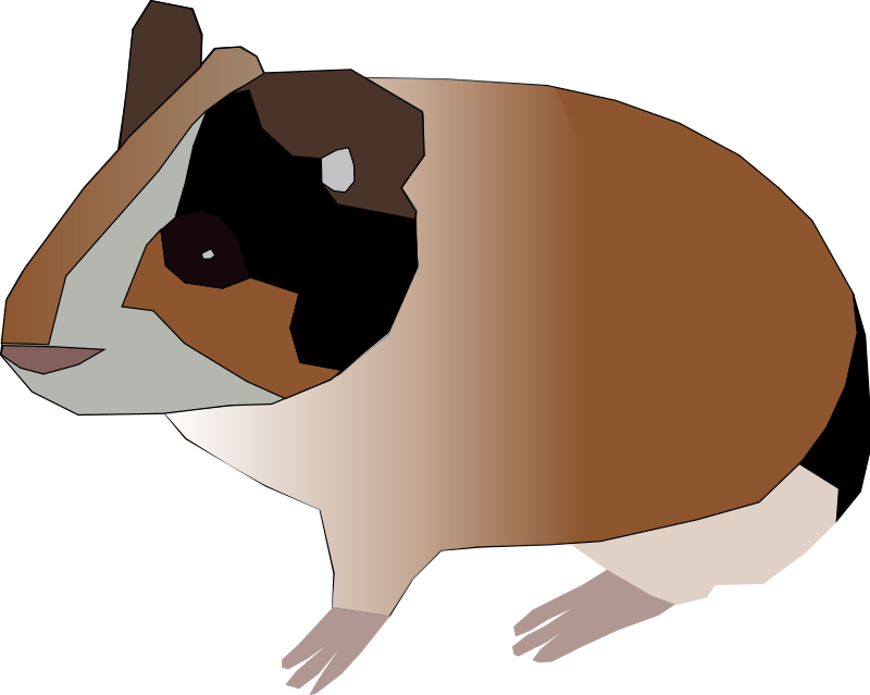 clip freeuse library Brown clipart guinea pig. Free animals machovka open