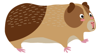 jpg royalty free stock Brown clipart guinea pig. Pigs lake district wildlife