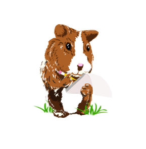 clip free library A owner s commandments. Brown clipart guinea pig
