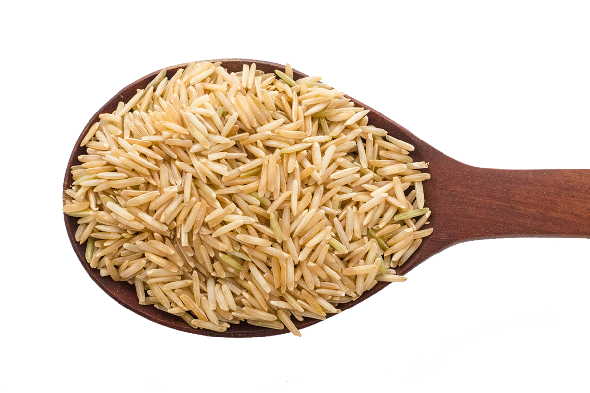 picture free stock Brown Rice PNG Transparent Brown Rice