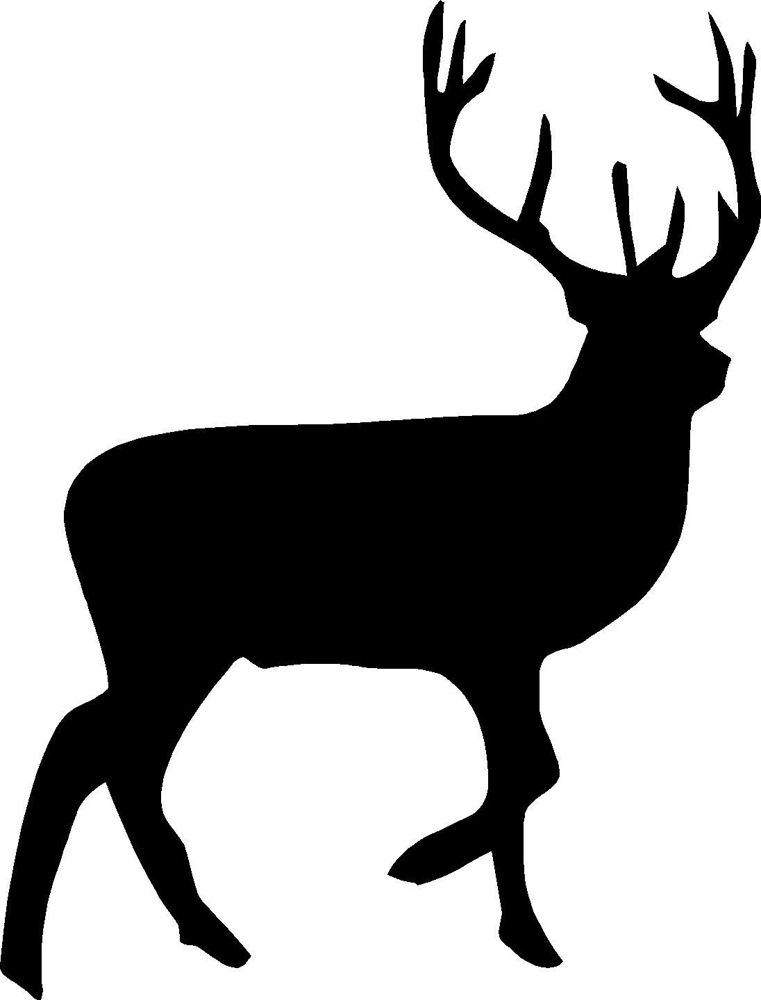 image freeuse Free cliparts download clip. Buck clipart.