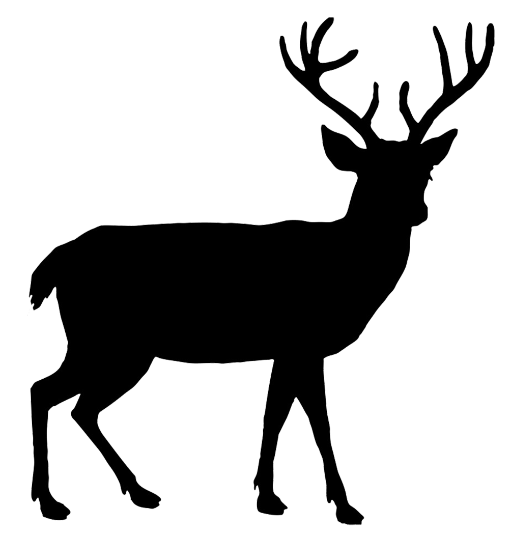 svg freeuse Red Deer Silhouette at GetDrawings