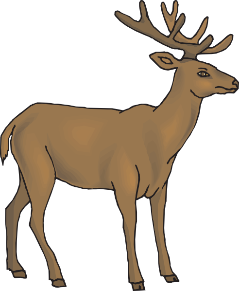 picture library Buck clipart venison. White tailed deer whitetail