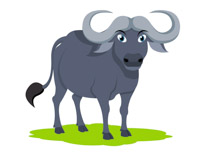 image download Free clip art pictures. Buffalo clipart.