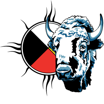 png freeuse download Respect the shamanism pinterest. Buffalo clipart aboriginal