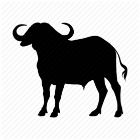 vector royalty free Png images transparent free. Buffalo clipart silhouette.