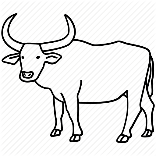 image black and white stock Buffalo Outline Drawing at GetDrawings
