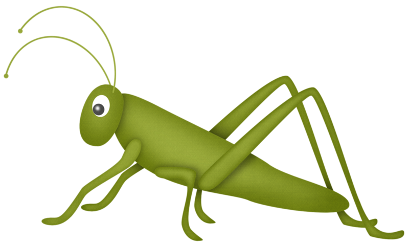 picture stock  u bugs pinterest. Bug clipart praying mantis