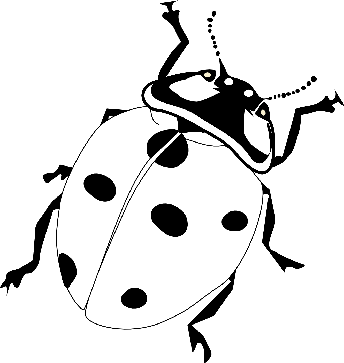 vector stock realistic ladybird drawing