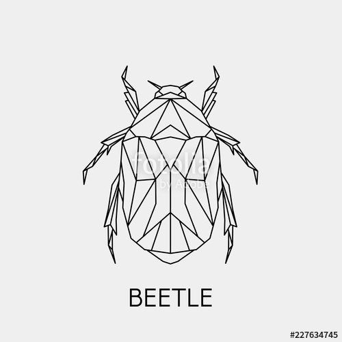 banner free download Bug vector. Geometric beetle polygonal linear