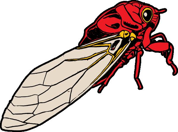 jpg library stock Bug clip art at. Bugs clipart cicada