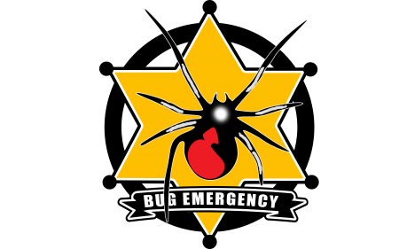 vector free library Pest control experts bug. Bugs clipart different insect.