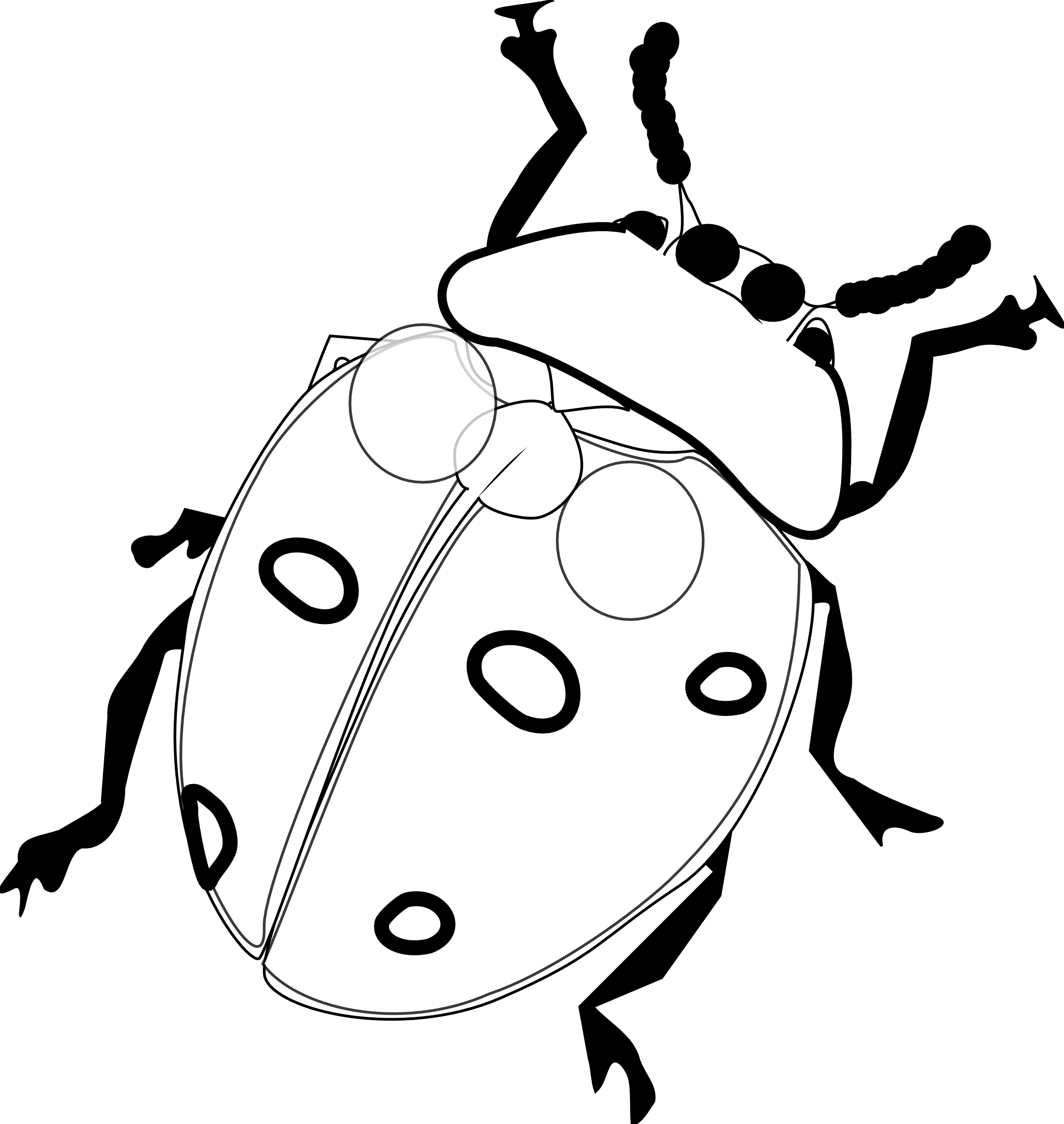 svg transparent Ladybug Coloring Pages