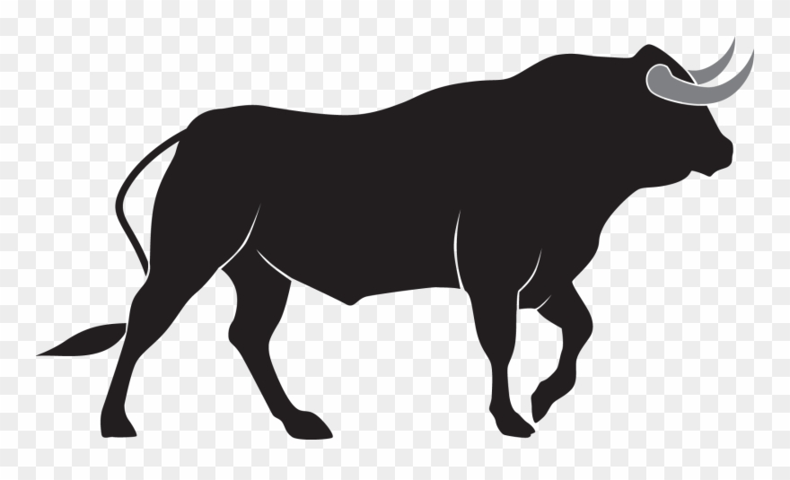 vector transparent library Png image bulls transparent. Bull clipart