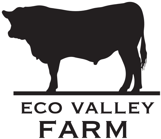 image transparent download Bull clipart angus beef. Eco valley farm