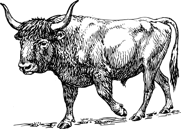 vector royalty free stock Aurochs clip art at. Bull clipart toros