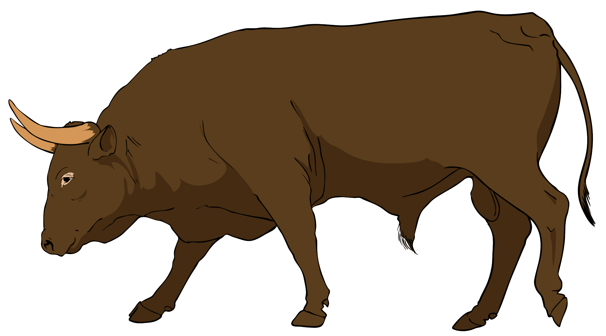 clip transparent library Bull clipart. Clip art pictures panda