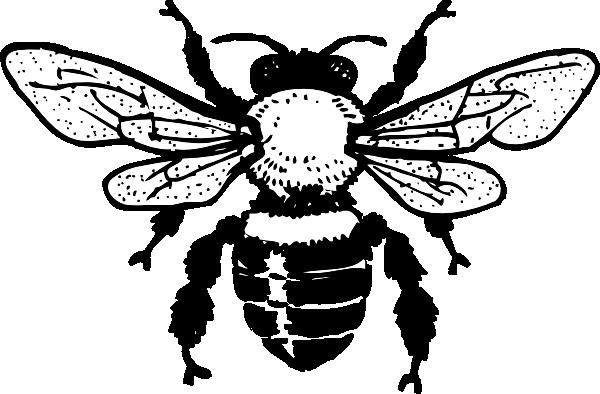 image freeuse stock Bumblebee clipart beeblack. Honey bee clip art