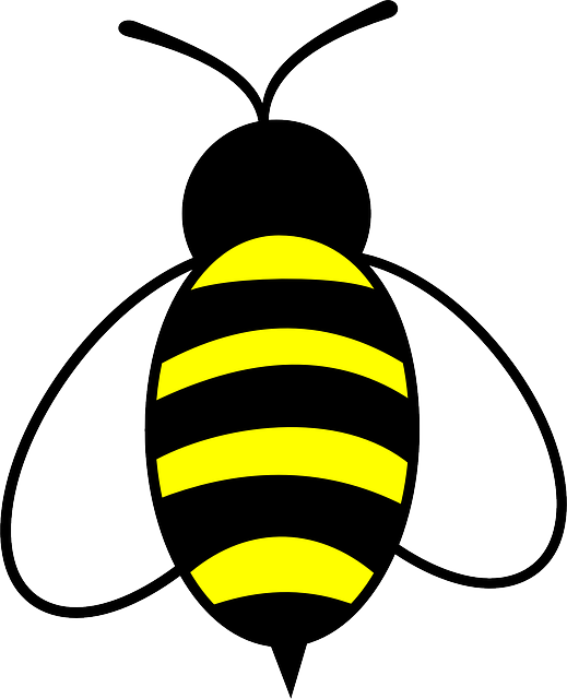 graphic freeuse download Free image on pixabay. Bumblebee clipart mean to bee