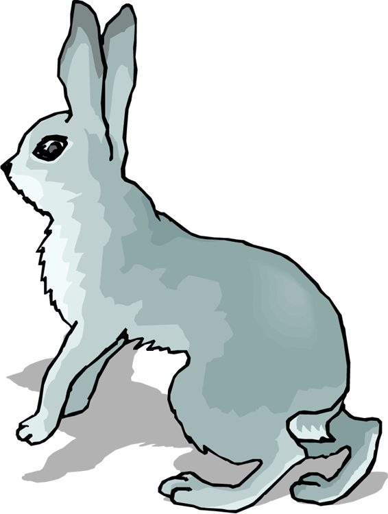 banner black and white stock Free . Bunnies clipart wild rabbit.