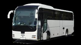 freeuse Essen Bus