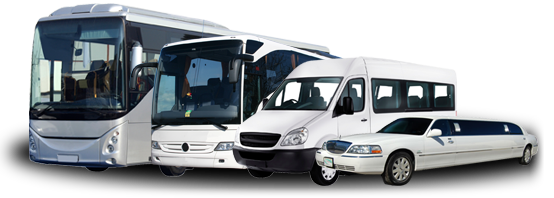 vector black and white library Five Star Tours and Bus Charter Company