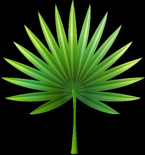 freeuse Exotic png clip art. Bush clipart leaf jungle.