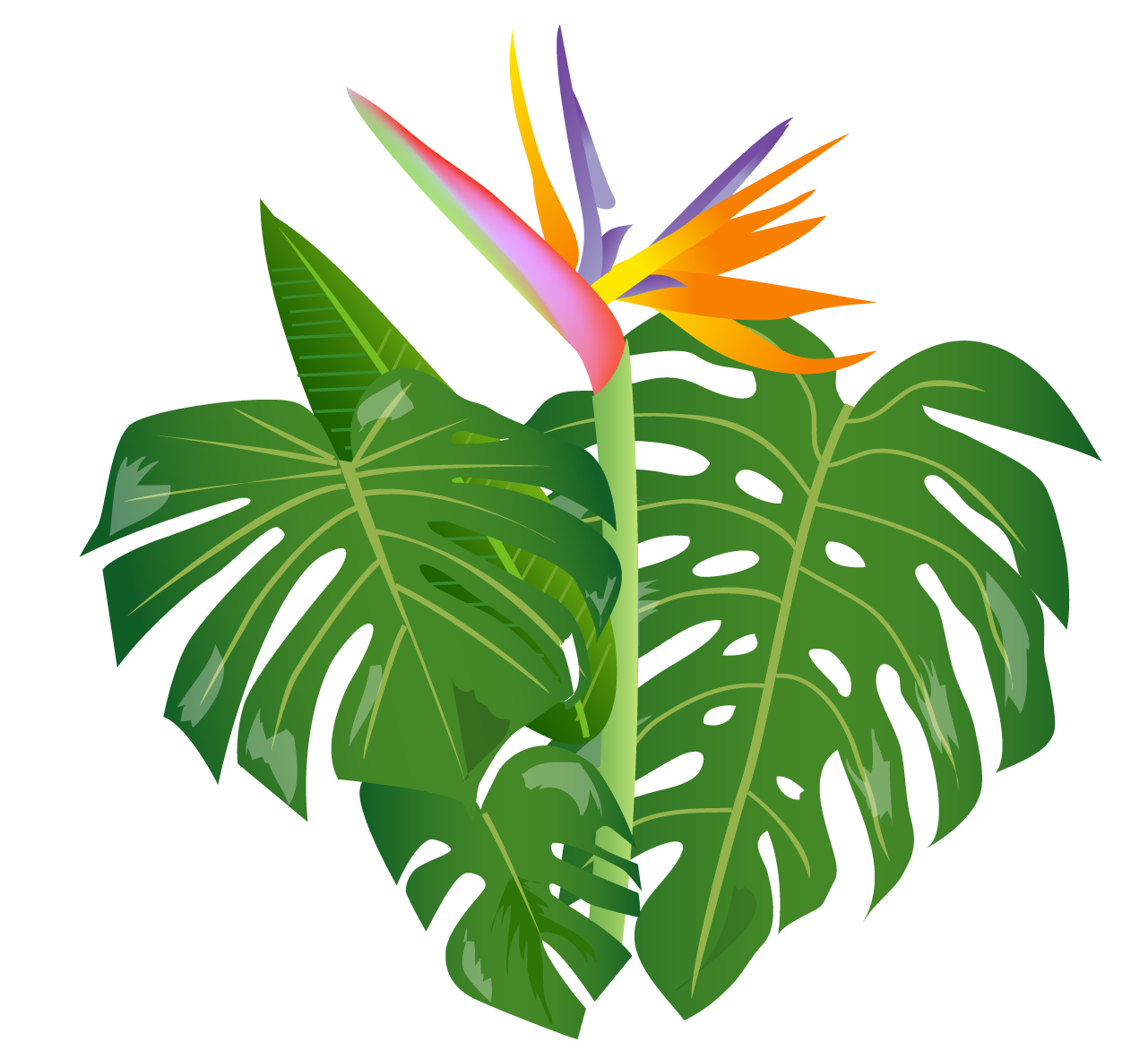 royalty free download Shrub free on dumielauxepices. Bush clipart leaf jungle.