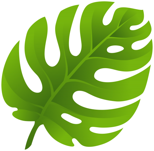 clipart black and white stock Bush clipart leaf jungle. Exotic png clip art.