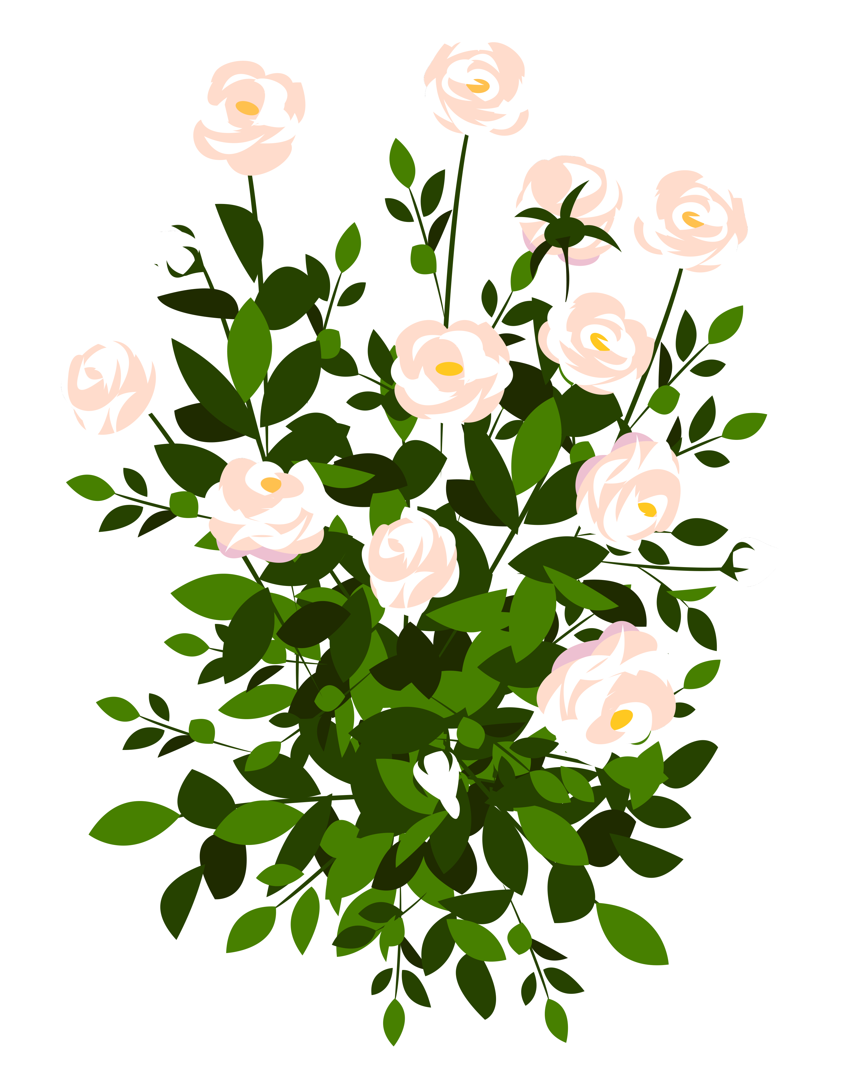 picture royalty free stock Bush clipart transparent flower. Whte rose png picture.