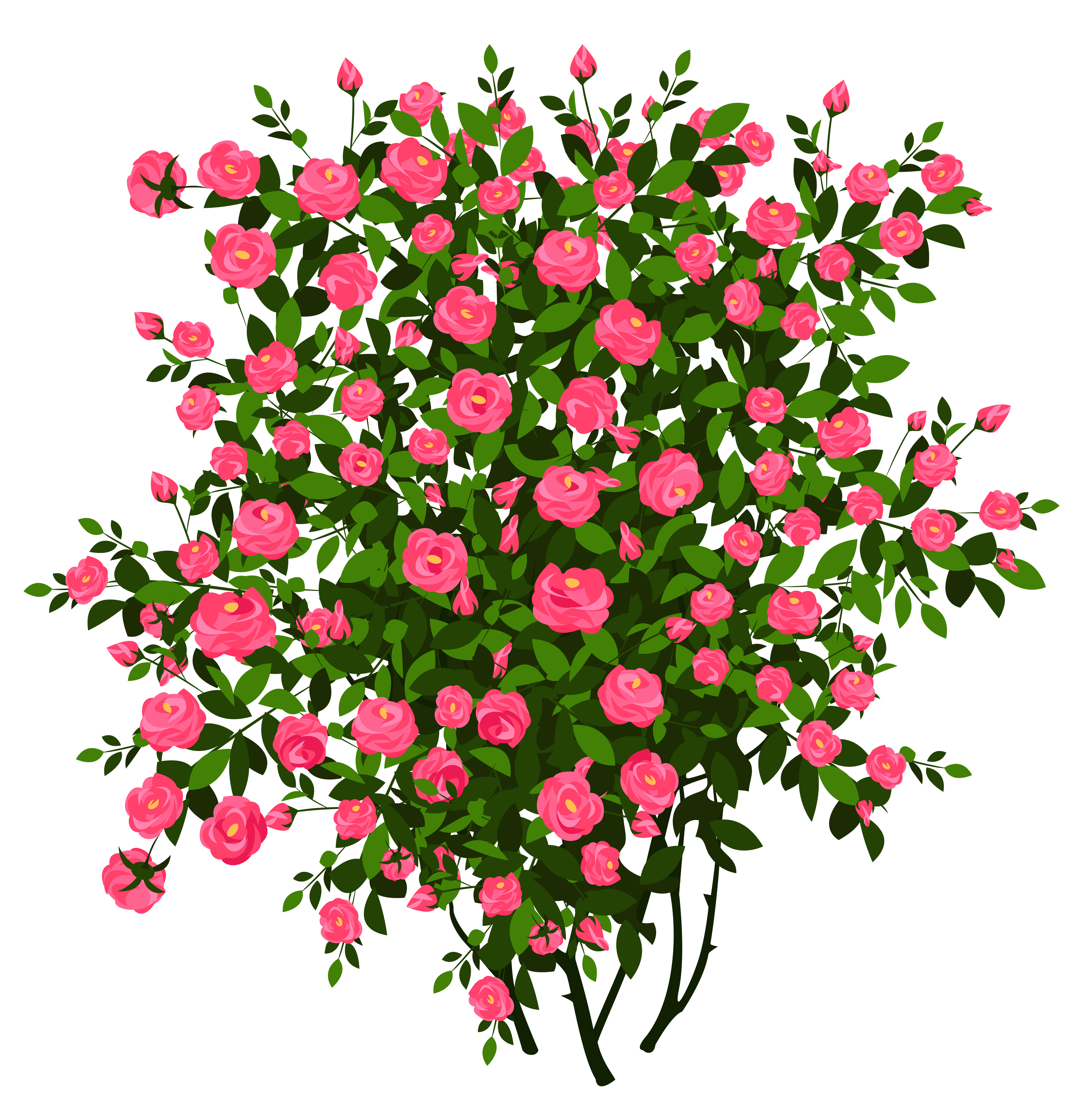 png library library Bush clipart transparent flower. Pink rose png picture.
