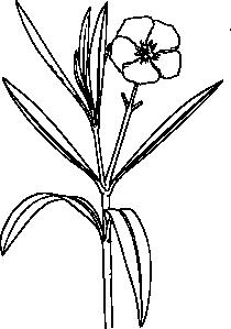 clip art stock Flower bush clip art. Vector bushes black and white