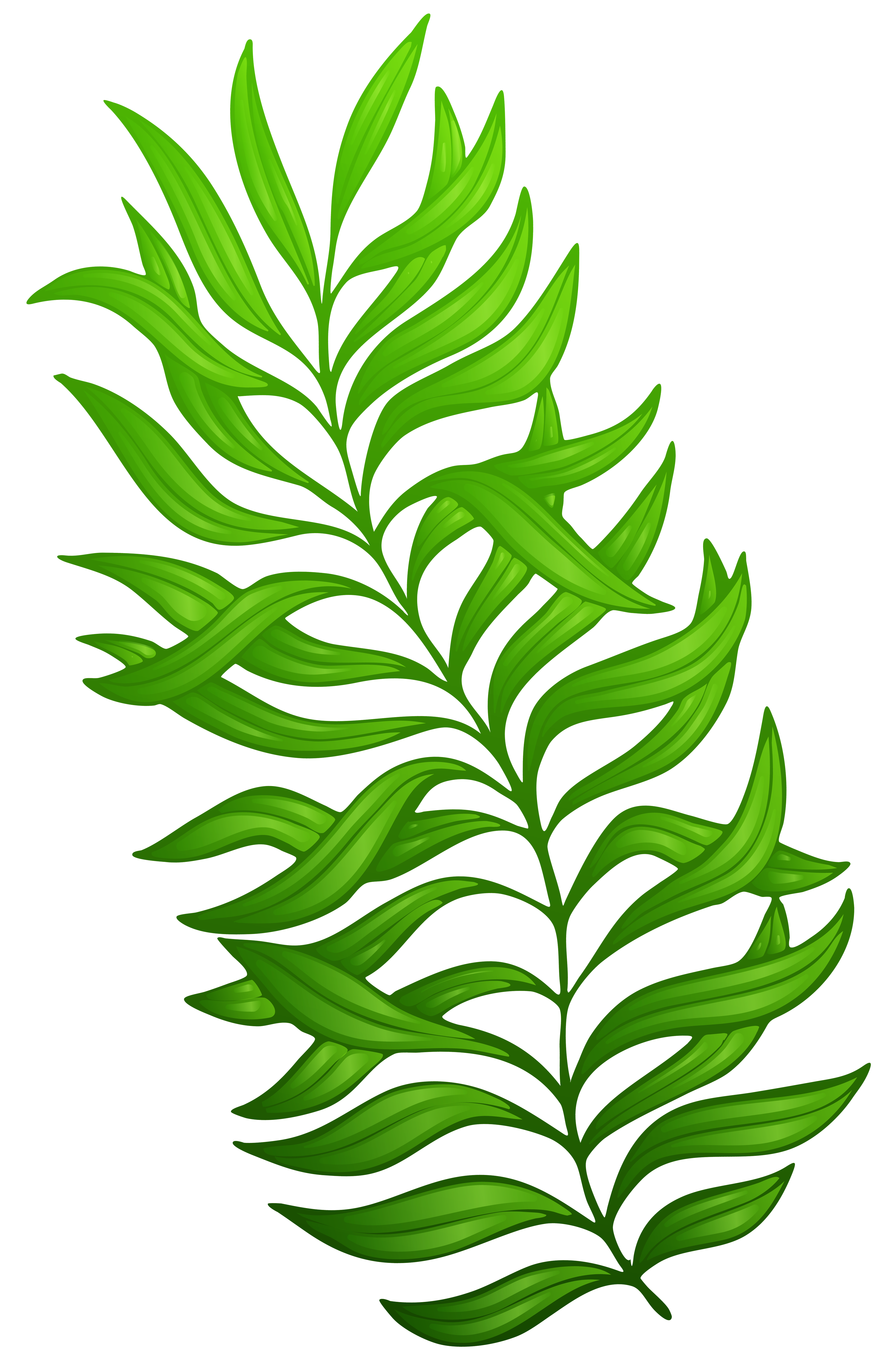 banner freeuse stock Exotic green plant png. Bushes clipart lot flower