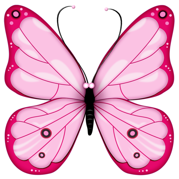 freeuse download Butterflies clipart. Pink transparent butterfly gallery.
