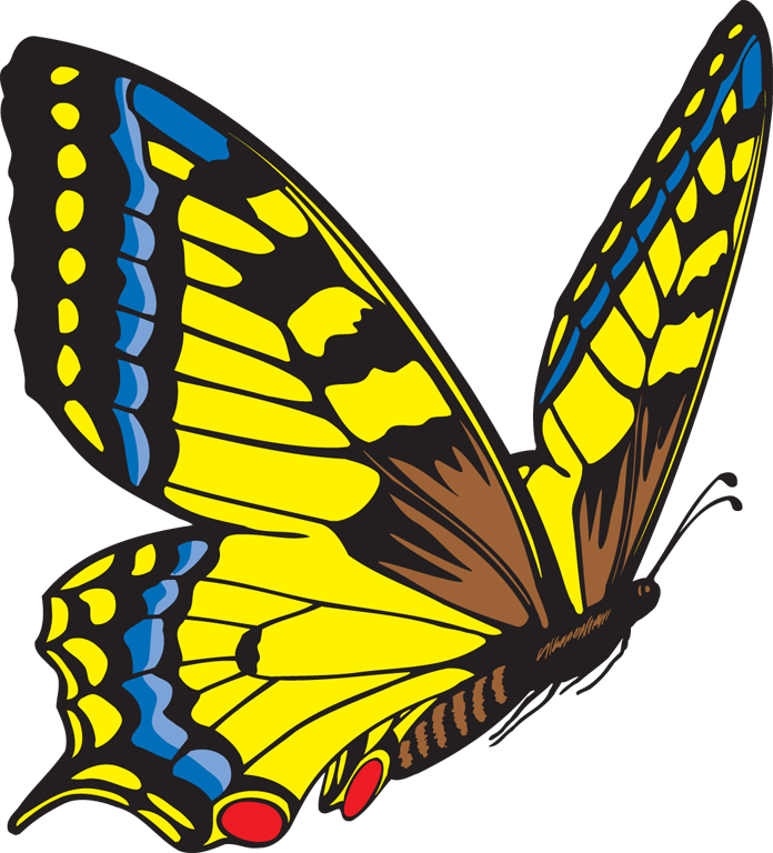 image royalty free library Butterfly clipart. Yellow panda free images.