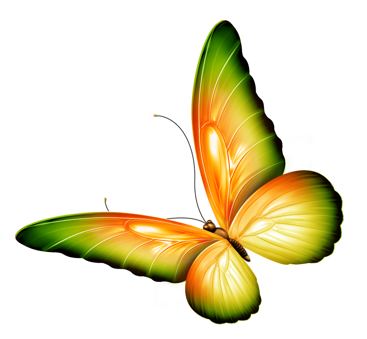 image free library Yellow and green transparent. Butterflies clipart banner.
