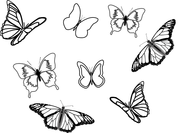 png black and white download Eight Butterflies Clip Art at Clker
