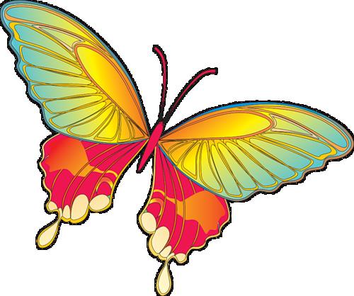 clip freeuse Yellow butterfly art pinterest. Butterflies clipart cartoon.