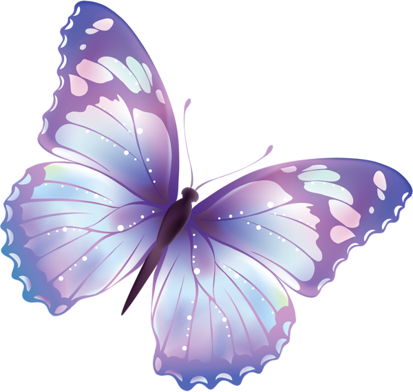 clip free stock Free transparent png large. Butterfly clipart translucent.