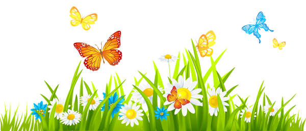 jpg transparent stock Grass Ground with Flowers and Butterflies PNG