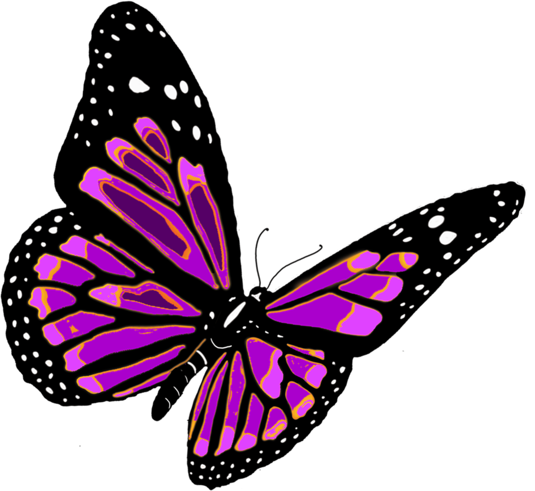 black and white download Butterfly clipart translucent. Png image free picture.