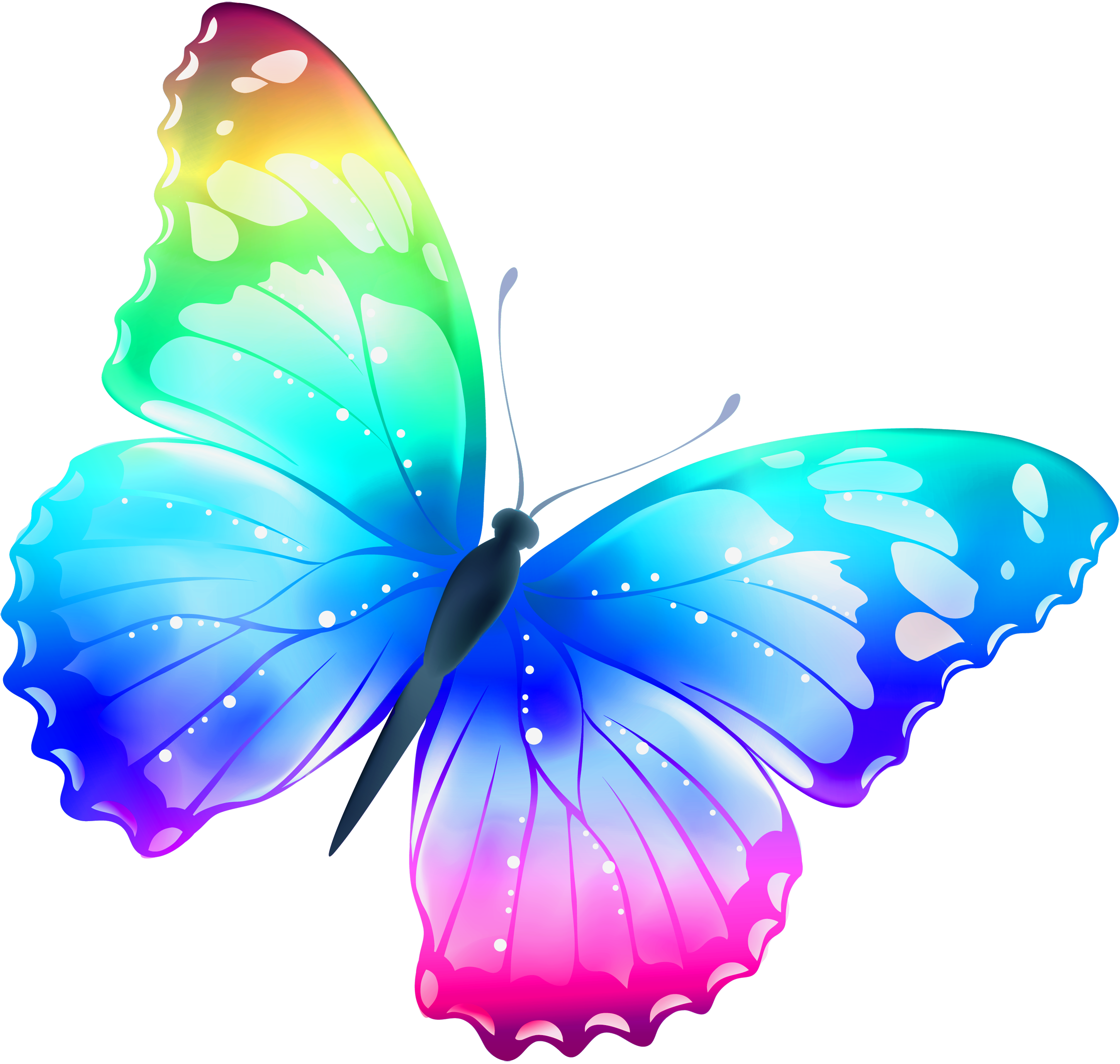 clip art black and white stock Free Pictures Of Butterflies