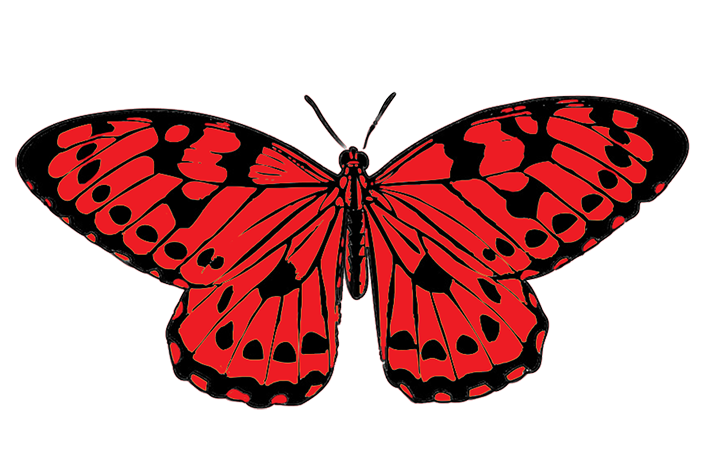 clip library download Butterfly clipart red. And black png transparent.