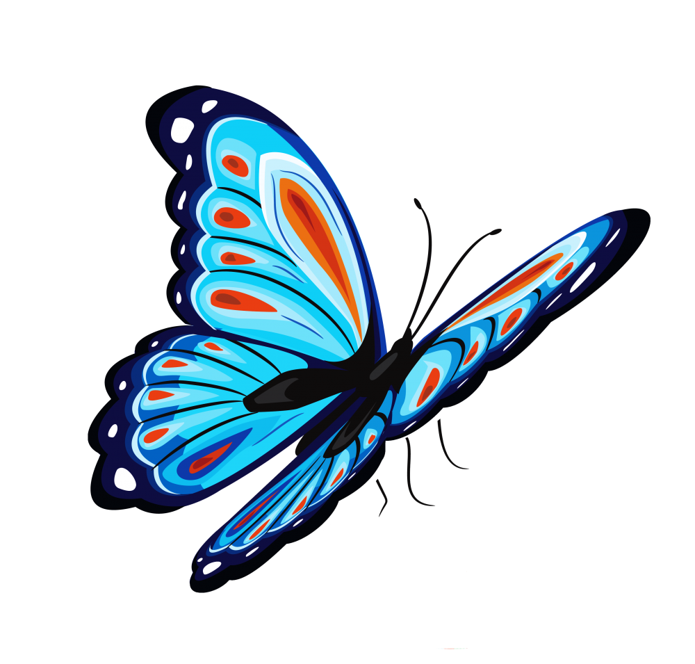 image stock Butterfly clipart translucent. Download blue png for.