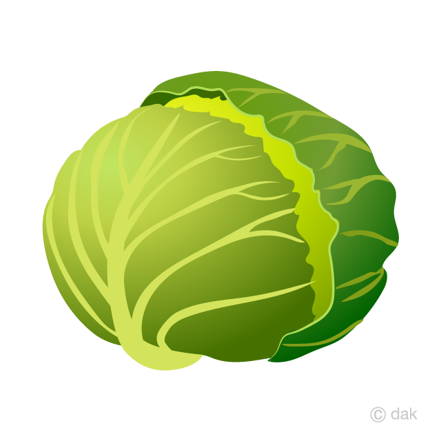 clip freeuse stock Free picture illustoon . Cabbage clipart