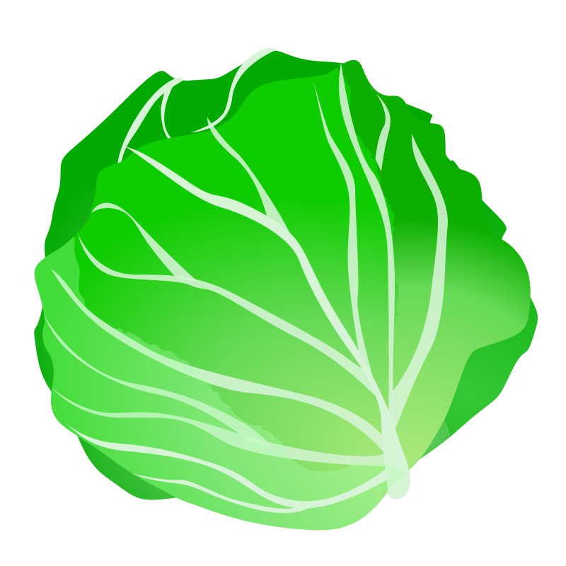 banner Lettuce clipart lettuce tomato. Cabbage recipes vegetables fruit.