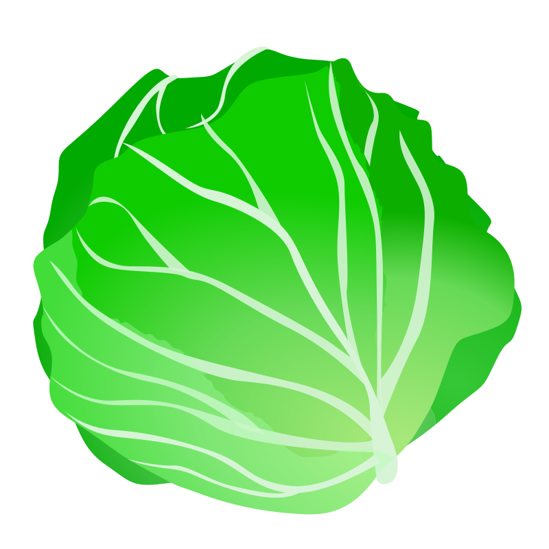 clip freeuse library Lettuce Clipart at GetDrawings
