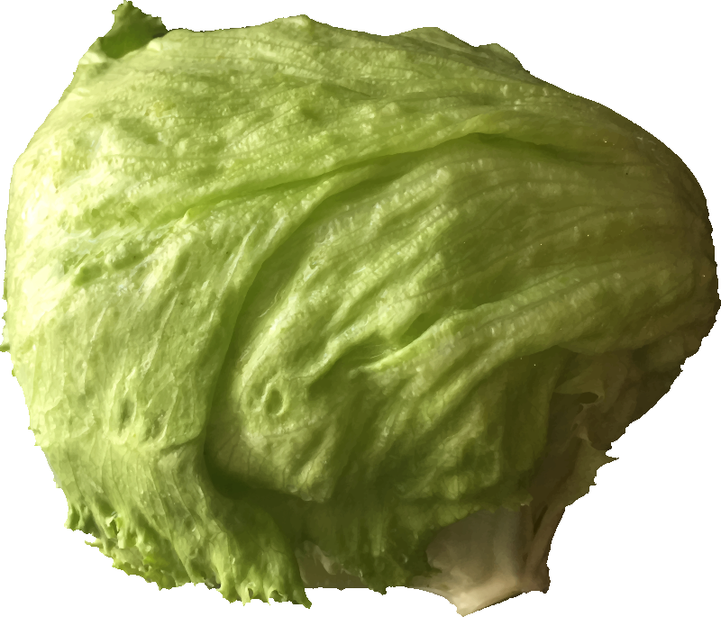 royalty free library Medium image png . Cabbage clipart iceberg lettuce.